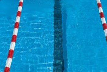 The butterfly stroke demands strong chest, back and shoulder muscles.