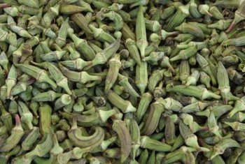 Okra pods are best harvested when they are young and tender.