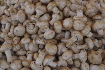 Button mushrooms are the most commonly grown type of mushroom in the United States.
