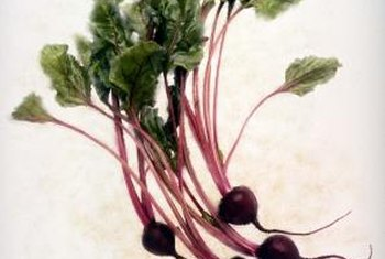 Beets are easy to grow.