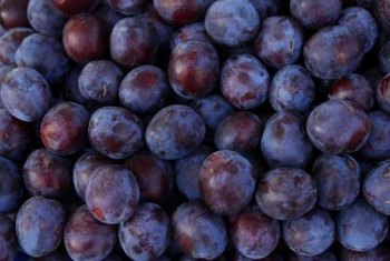 European plums tend to be small, with blue and purple skin.