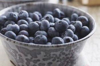 Blueberries are a favorite of many gardeners.