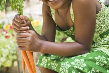 Carrots make a tasty addition to the home vegetable garden.