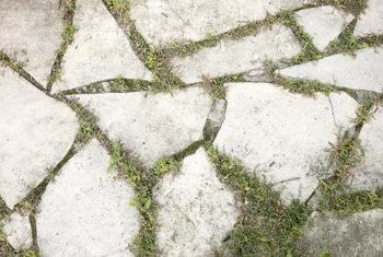 Non-selective herbicides can eliminate grass growing in crevices on sidewalks and paths.