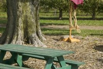 A bench can provide seating near your tree's mulch zone.