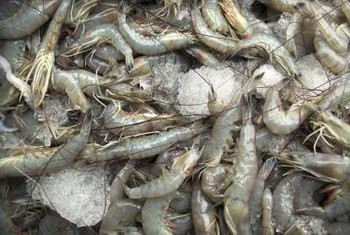 You may need an aquaculture permit to start a freshwater shrimp business.