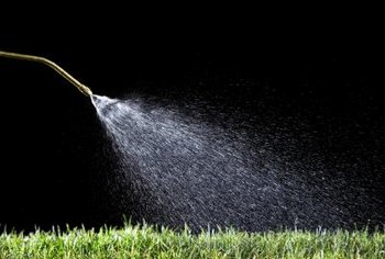 Pump sprayers have nozzles that you can adjust for windy conditions.