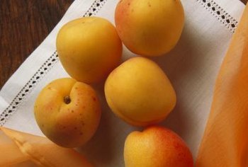 Apricots are delicious fresh, but are also used in canning and cooking.