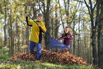 The leaf blower shortens the time needed to collect leaves.