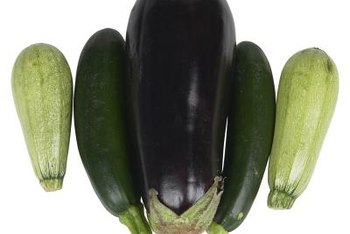Eggplant and squash are summer crops with similar needs.