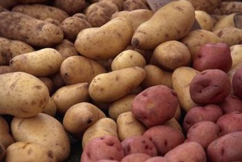 Grow potatoes for their tubers.