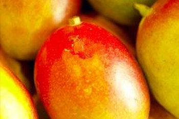Mango fruit and wood both contain colors such as yellow, green and pink.