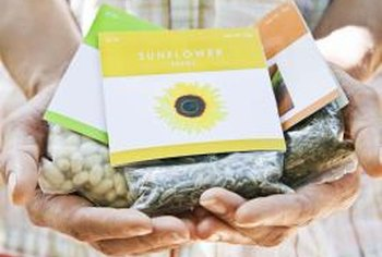 Take garden seeds out of the original package and vacuum seal for maximum shelf life.