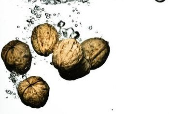 After washing the hulled black walnuts, enjoy their sweetness.