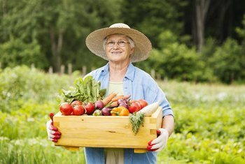 Some farmers specialize in growing vegetables and fruits for direct marketing to consumers.