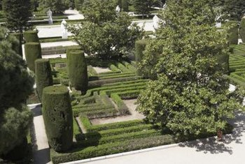 Hedge sculptures can be low decorative borders or tall forms.