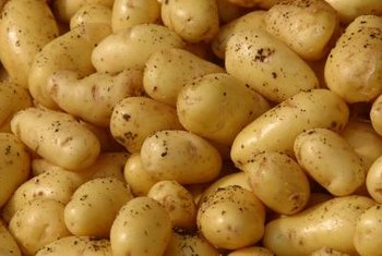 """German Butterball"" potatoes are known for their sprawling habit and high yield."