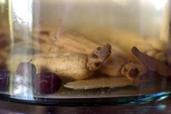 Ginseng is often grown for its roots, which are used as an herb.