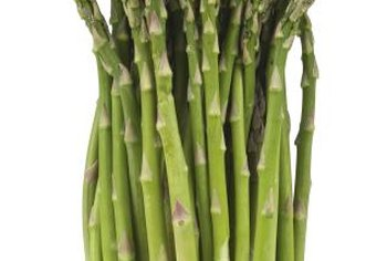 Asparagus produces its best spears when allowed to grow without competing weeds.