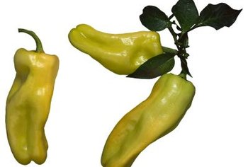 Banana peppers add crunch and color to a host of recipes.