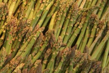 Harvest asparagus spears when they reach about 8 inches in length.