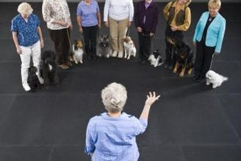 Dog trainers teach owners to train their pets.