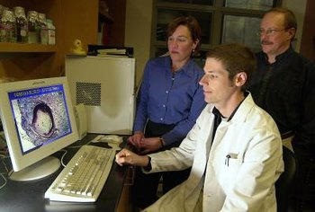 Biomedical engineers use computer programs to help create biological tissues.