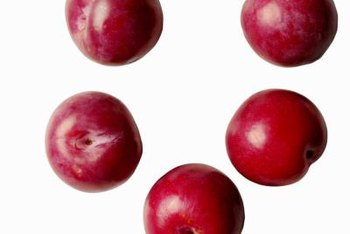 Summer is plum season.