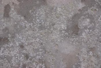 It is important to remove oily stains from concrete before staining or color will not penetrate properly.