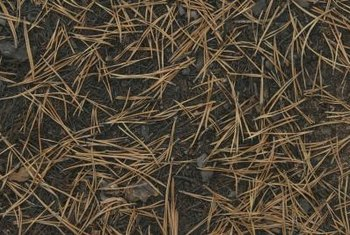 Lime can be helpful if your compost contains acidic materials such as pine needles.