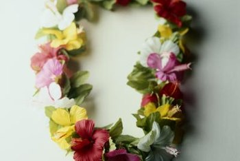 Hibiscus are used to make traditional Hawaiian leis.