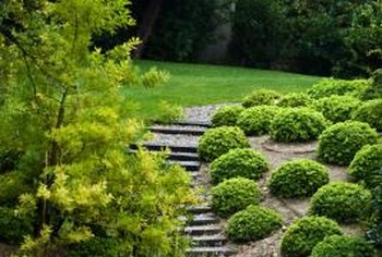 Add landscaping behind retaining walls to add appeal to the area.