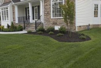 Mulching produces a healthy lawn with lower maintenance costs.