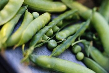 Peas aren't only tasty to people; worms like to munch down every now and then, too.