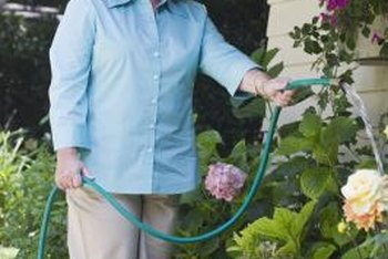 Adding a pump to your rain barrel should provide ample force for simple garden watering chores.
