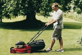 Replacing the spark plug yearly keeps your lawnmower humming.