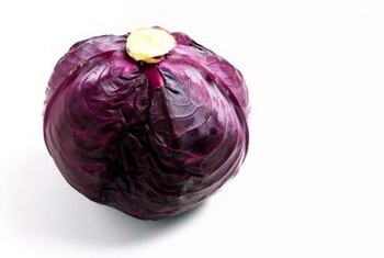 Red cabbage is more than a culinary dish -- it's a science experiment waiting to happen.