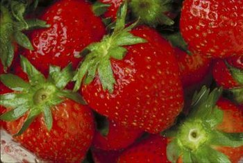 Consider hardiness, yield and sweetness when selecting strawberries for your garden.