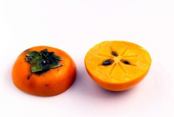 Plant persimmon in your yard in the fall or spring.