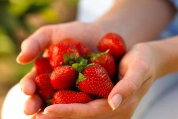 Keep your strawberries warm in winter to help produce a plentiful harvest the next season.