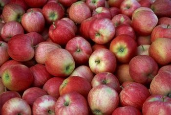 Gala apples are among the earliest ripening varieties.
