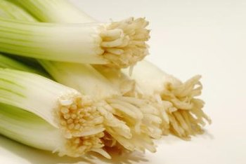 Good soiil quality results in flavorful green onions.
