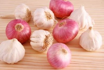 Garlic and onions are for more than just cooking: They also repel insects.