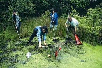 Organic chemists can advise on environmental cleanups.