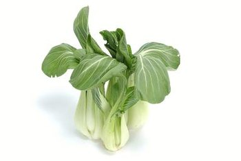 A common nickname for pak choi is spoon cabbage.
