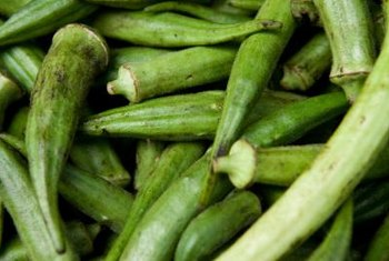 Okra is sometimes known as gumbo.