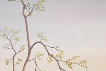 Projecting a tree image into a corner is helpful for painting the design.