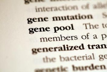 Clinical geneticists treat and study diseases caused by gene mutations.