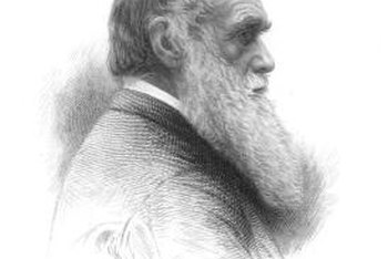 Charles Darwin gave biology possibly its greatest paradigm shift.