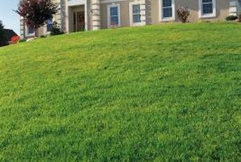 Some sloped lawns require different care than flat lawns.